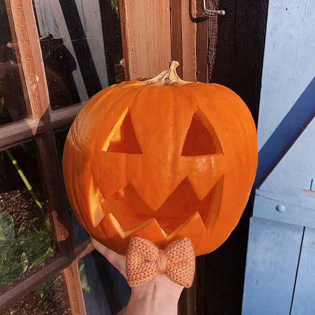 Halloween... après les autres 🎃😅 #ohgeorge #latehalloweenpost