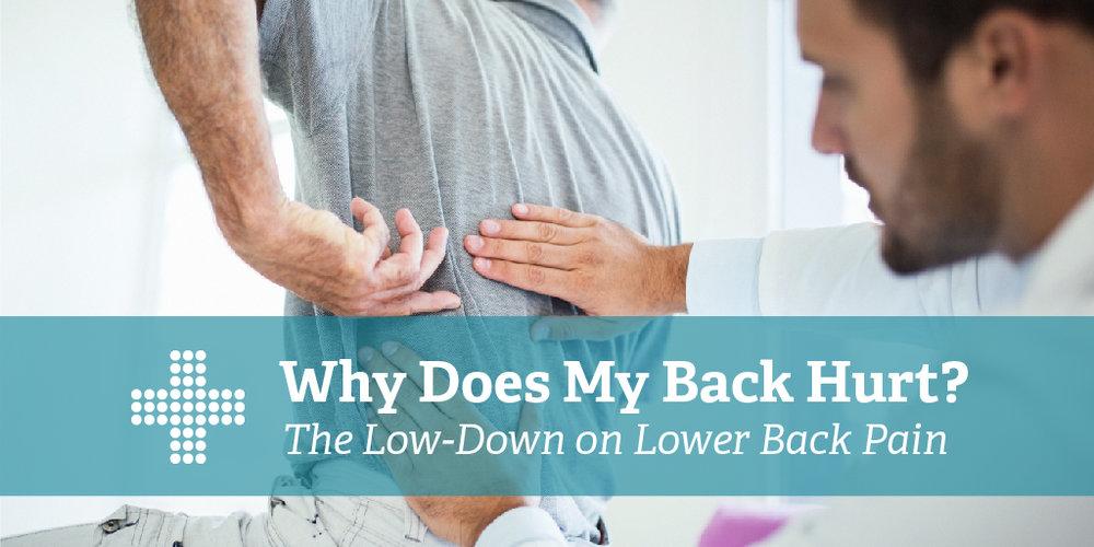 Why Does My Back Hurt-02.jpg