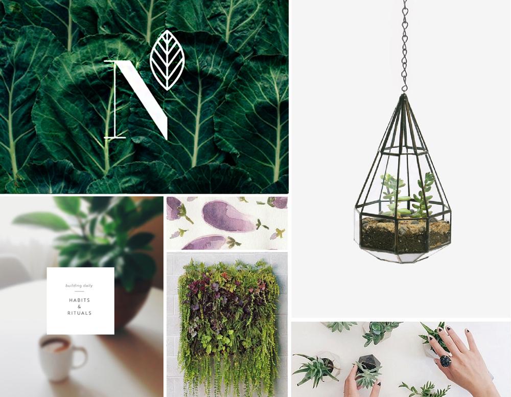 Branding-blog-design-moodboard1.jpg