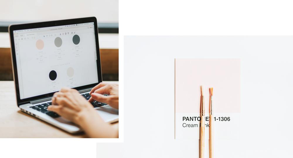 june-mango-branding-web-design.png