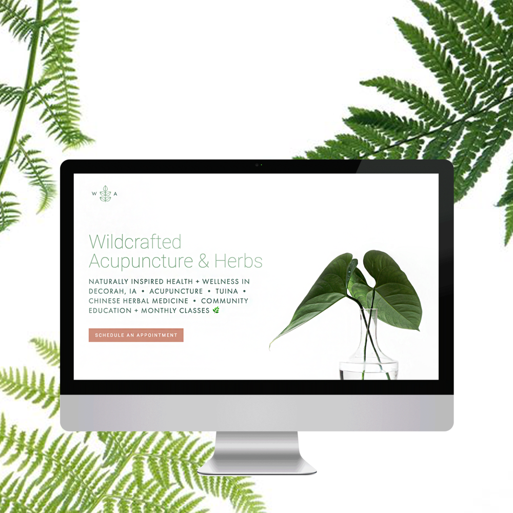 Wildcrafted Acupuncture and Herbs Go-Live-5