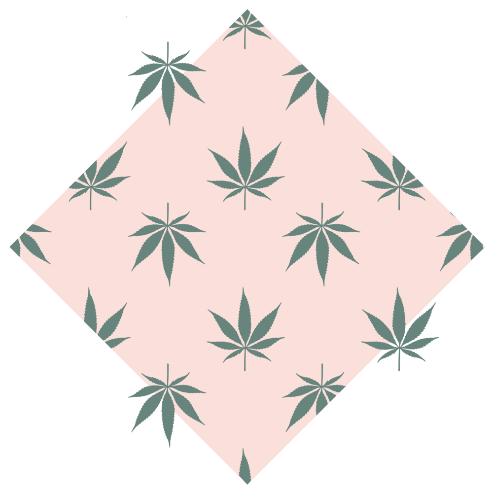 cannabis-blog-17.png