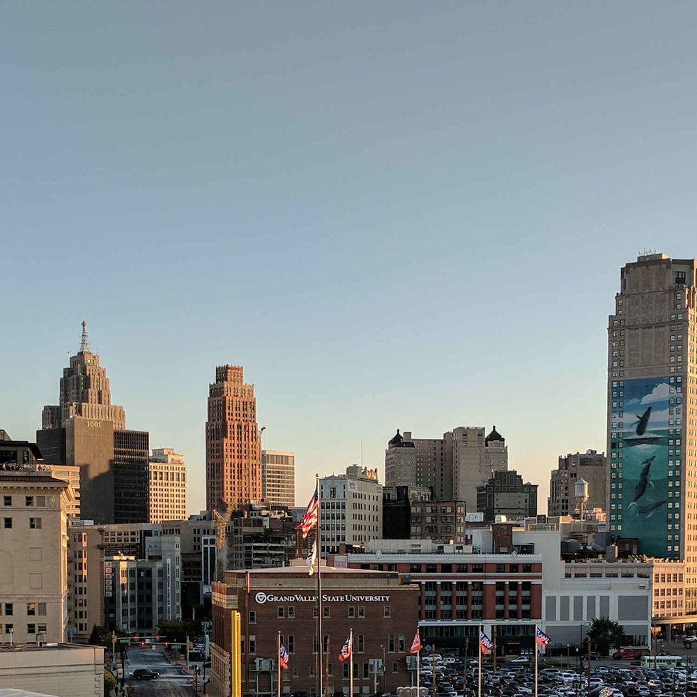 detroit-view-from-comerica-compressed.jpg