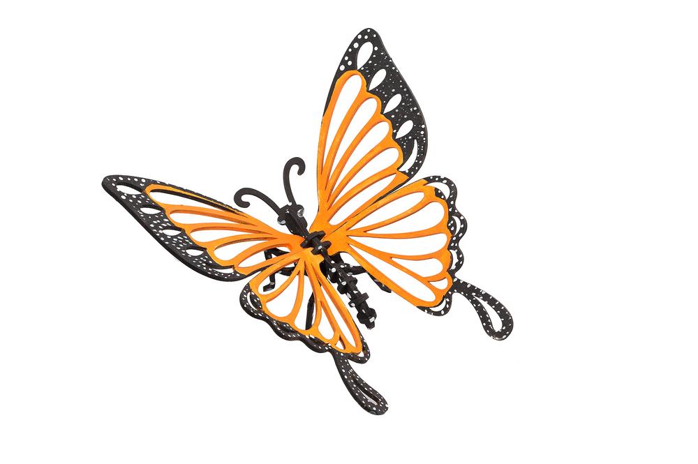 IB_Butterfly_painted_REV.jpg