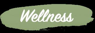 wellness tulum.png