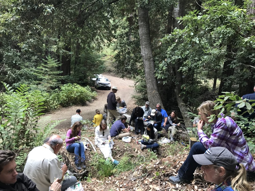 Lunch time at San Vicente Redwoods
