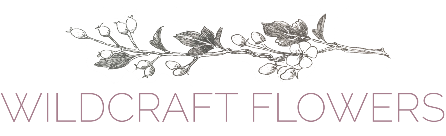 Wildcraft Flowers