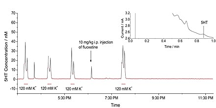 Dialysis concentration vs time for one-minute (500 nL) samples from rat striatum. A sample chromatogram is shown in the inset.
