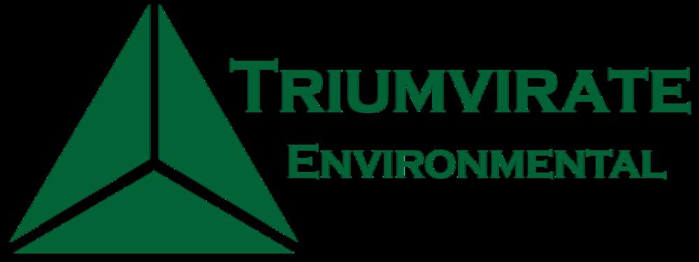TEI_Logo_2015_green.png
