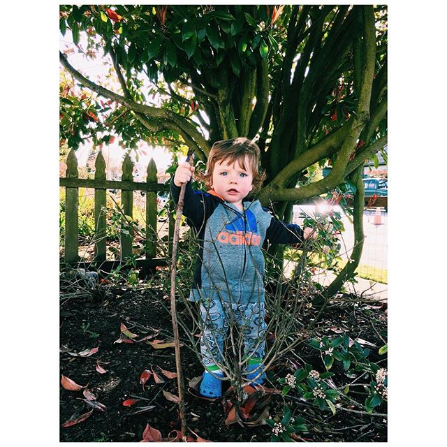 Garden warrior 🍃 #beautimothy #westseattle