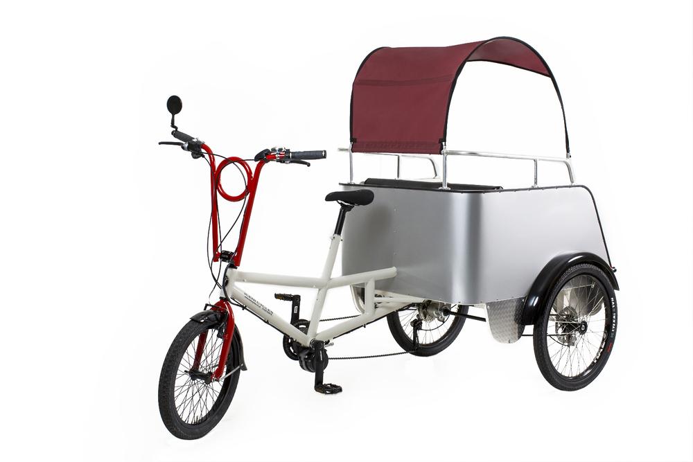 Iceni Family Trike