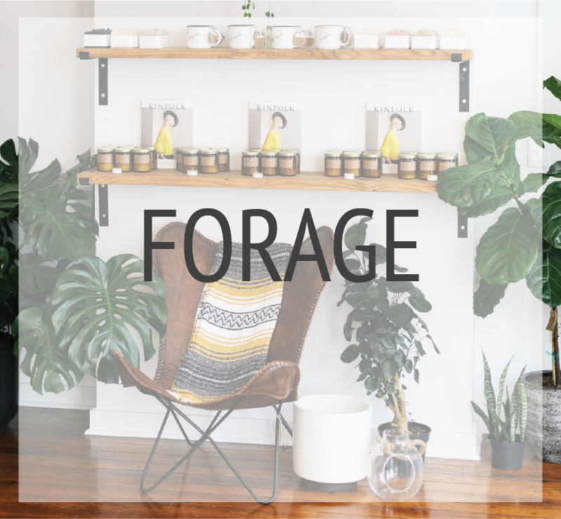 forage Archive-01.png