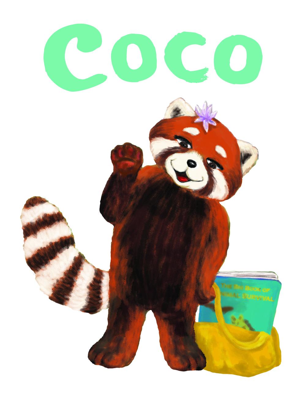 Coco_shirt.jpg