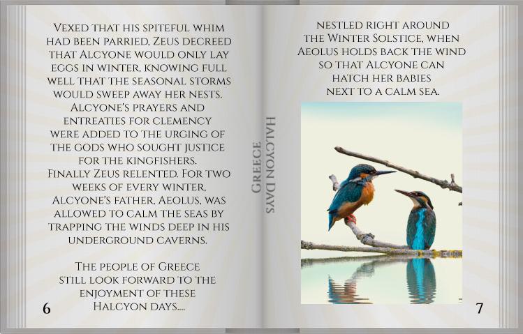 SL story book Halcyon pg6_7a.jpg
