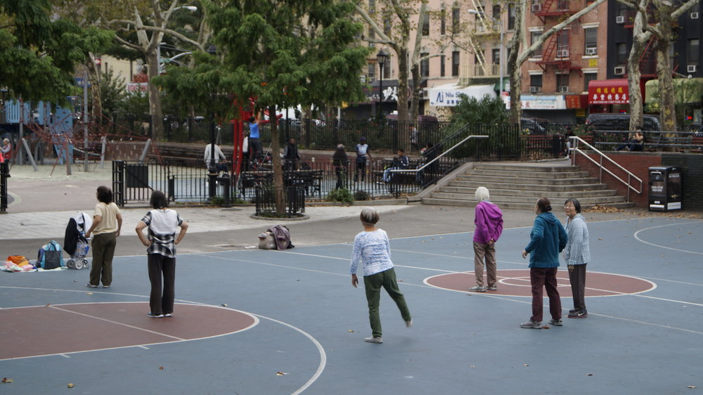 Intersections - Sara D Roosevelt Park located on the lower east side of Manhattan, is home to a variety of racial and ethnic groups. How can the re-imagination of place bring communities together?