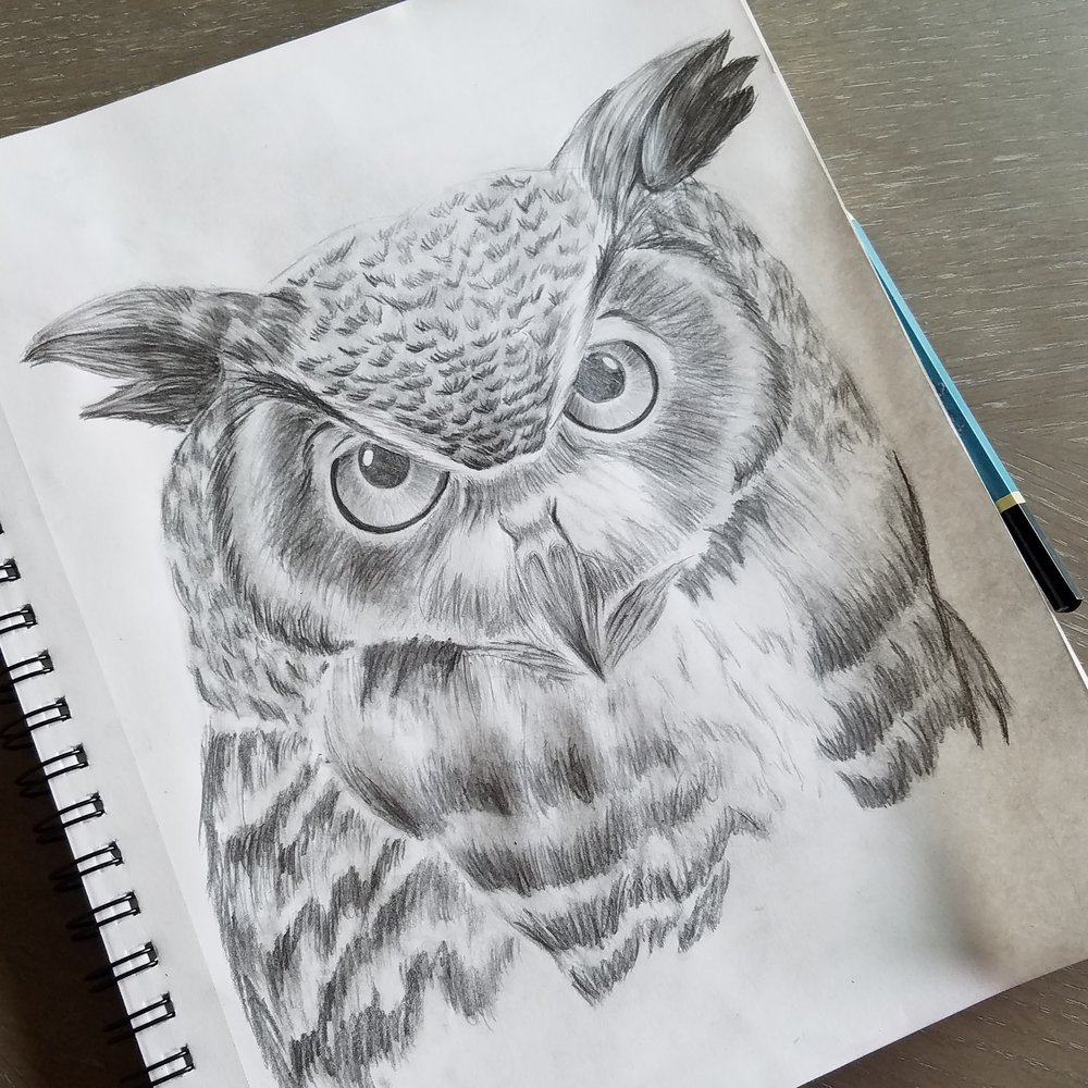 owl-drawing.jpg