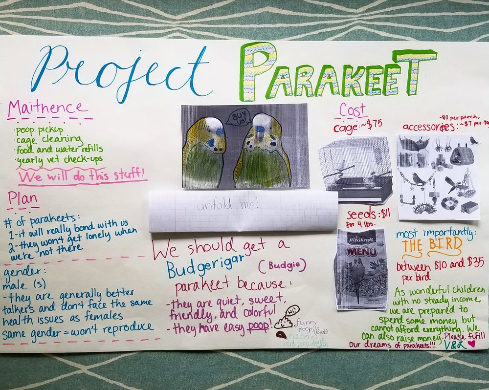Laurel and Violet did their research both on care and finances when proposing their desire for a pet parakeet.