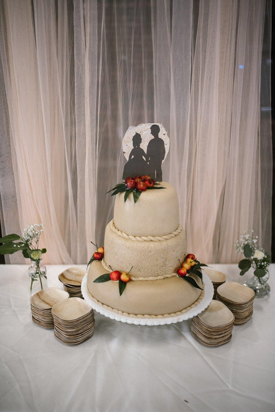 Minneapolis_Wedding_Photographer_0115.jpg