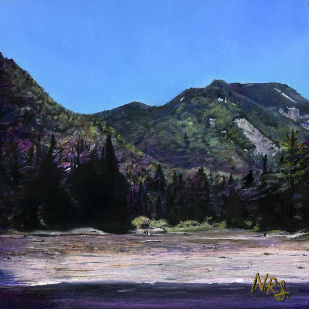 Adirondack View