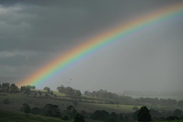 Rainbow over the hills - Dorrigo