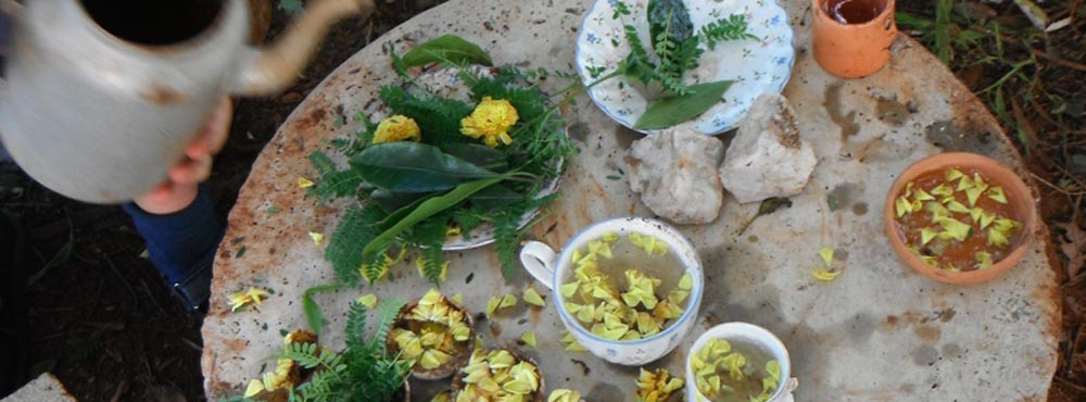 fairy wren farm creative therapy