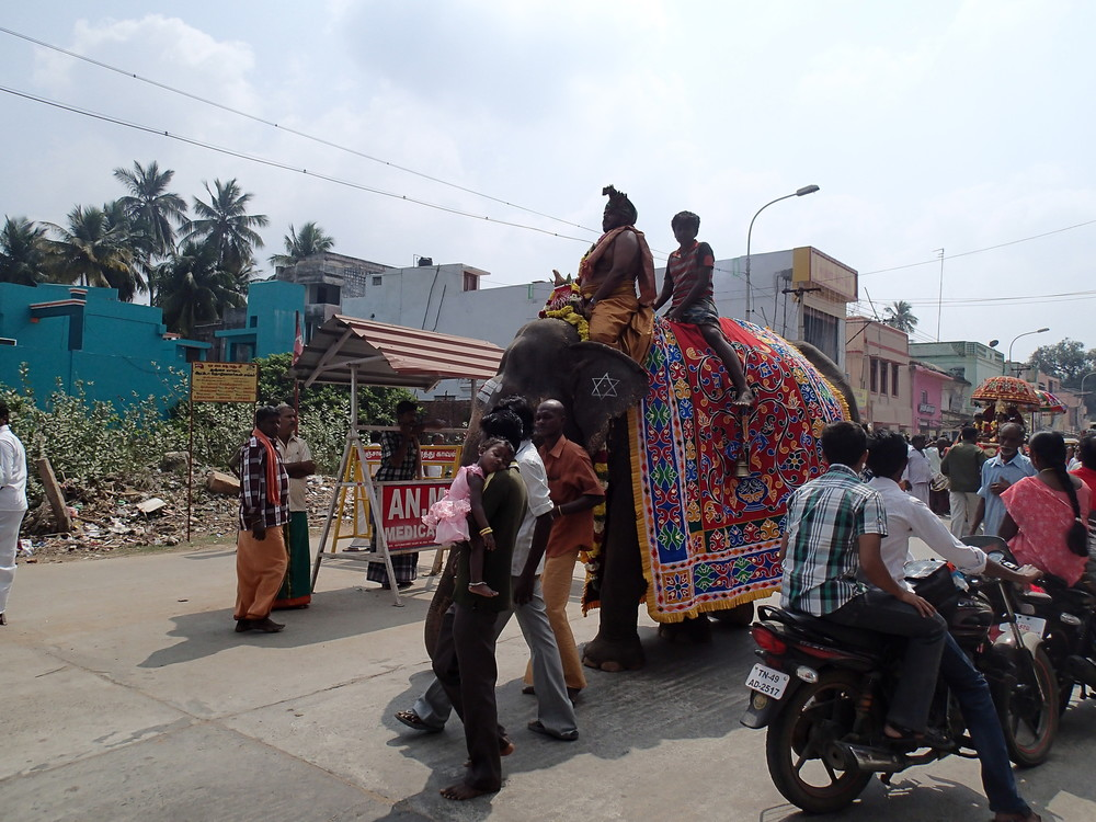 Elephant procession blocking the streets of Tanjore