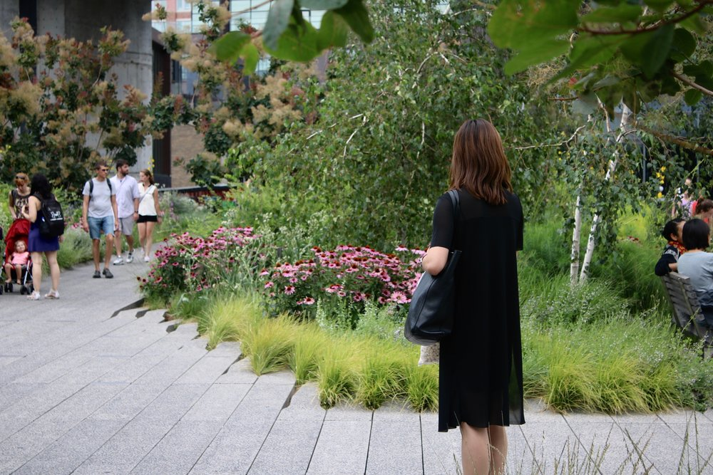 Highline Park    Read More