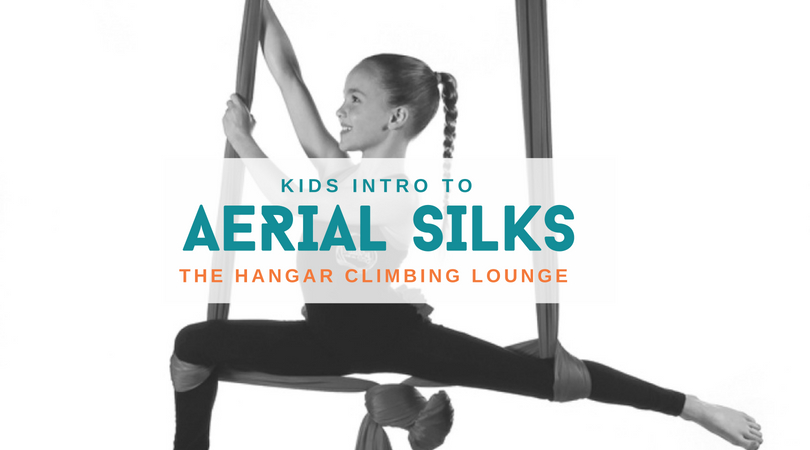 Aerial Silks FB Header.jpg