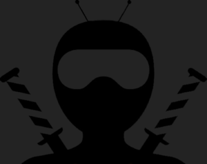 NinjaBot - Discord Bot — The Ginger Ninja