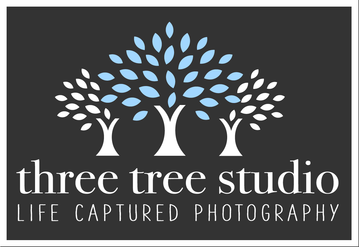 Three Tree Studio