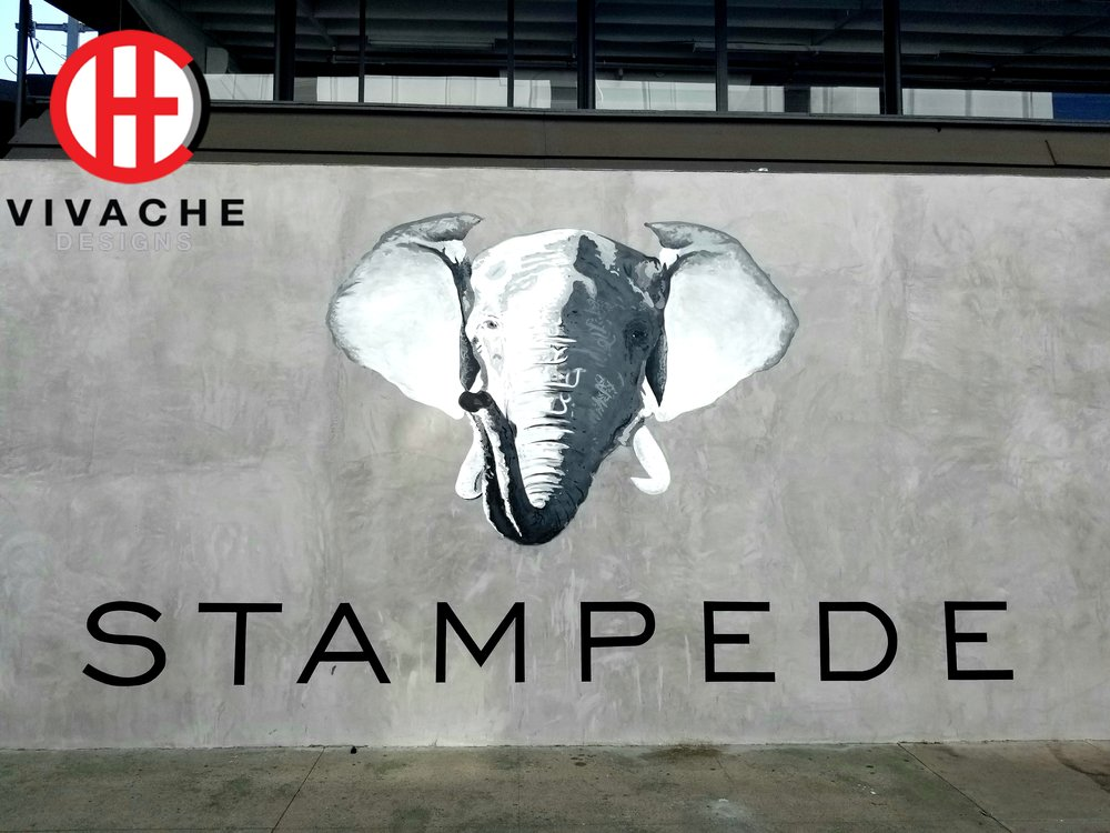 Mural Painter Vivache Designs painted this mural in West Hollywood in Los Angeles at Stampede Ventures' new Headquarters. Mural painting is our specialty call for your free mural quote.
