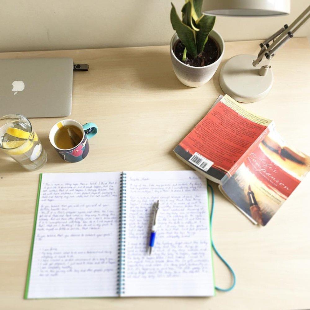 Journal for infertility The Preggers Kitchen
