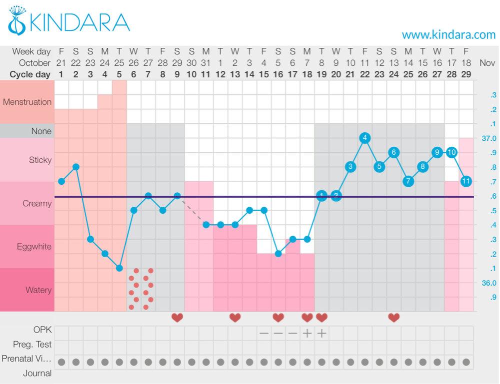 Fertility awareness method chart The Pregger Kitchen