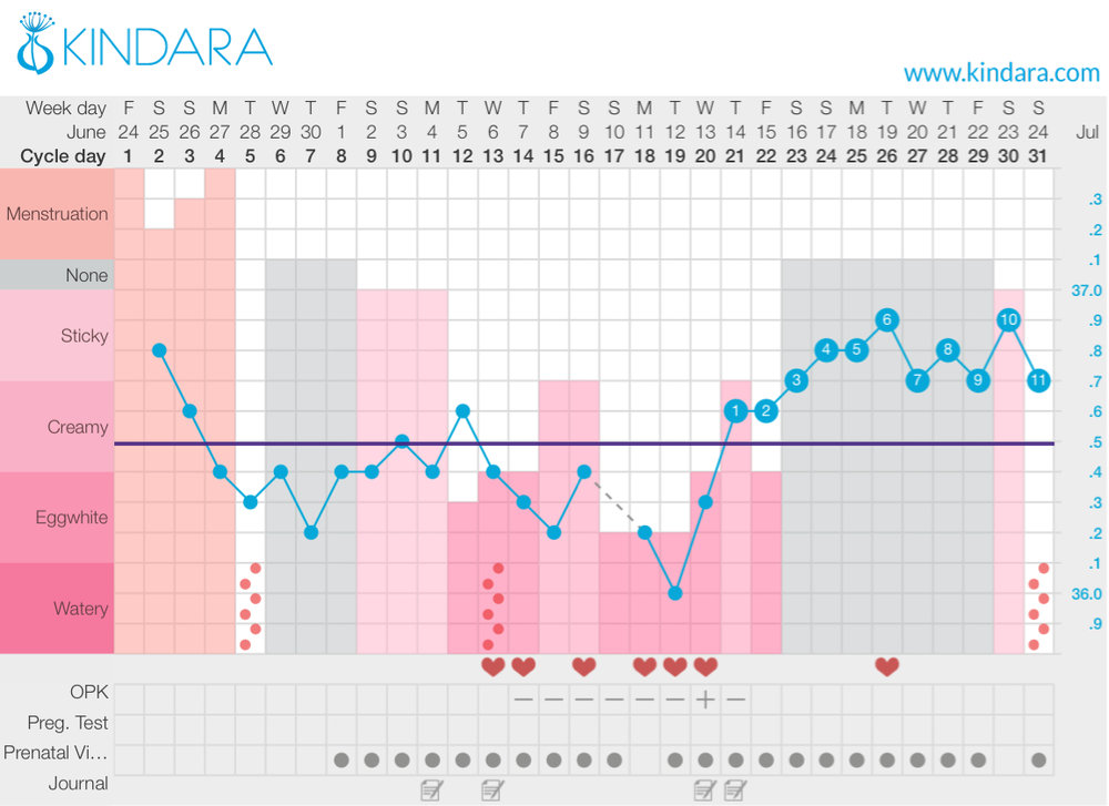 Example fertility chart using Kindara - fertility awareness method