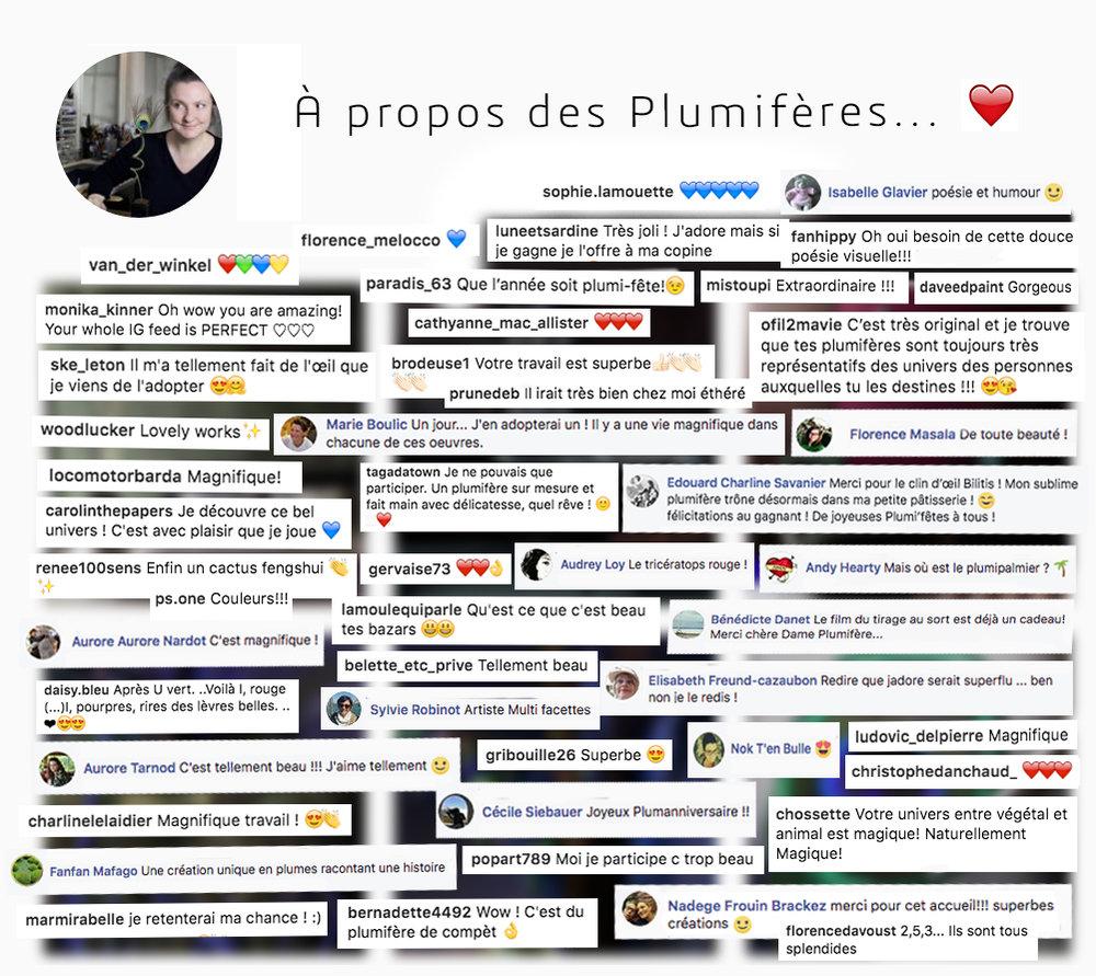 Plumifere-Bilitis Poirier.jpg