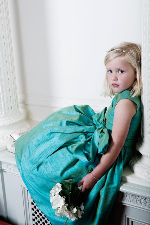 Amy party dress