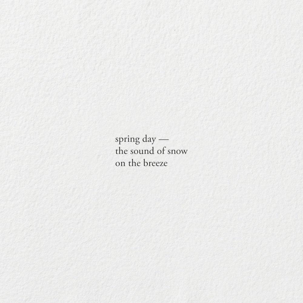 SpringDay.jpg
