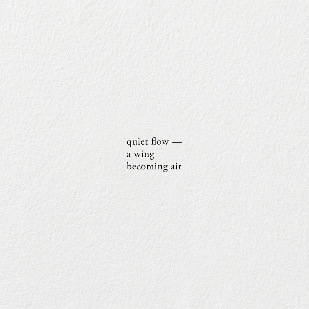 QuietWing.jpg