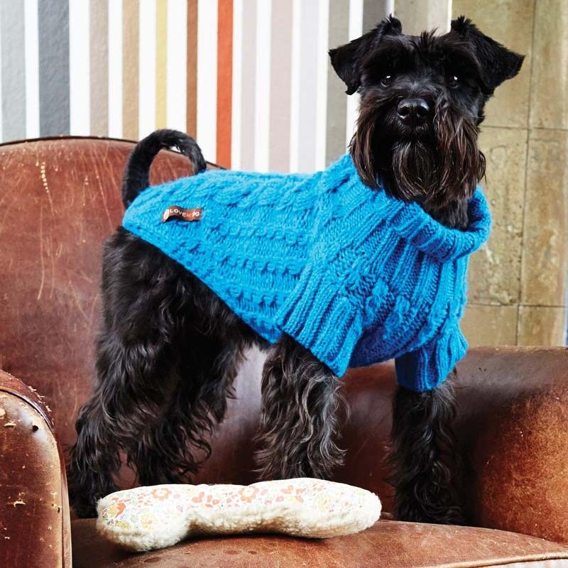 wilmot-blue-dog-jumper.jpg