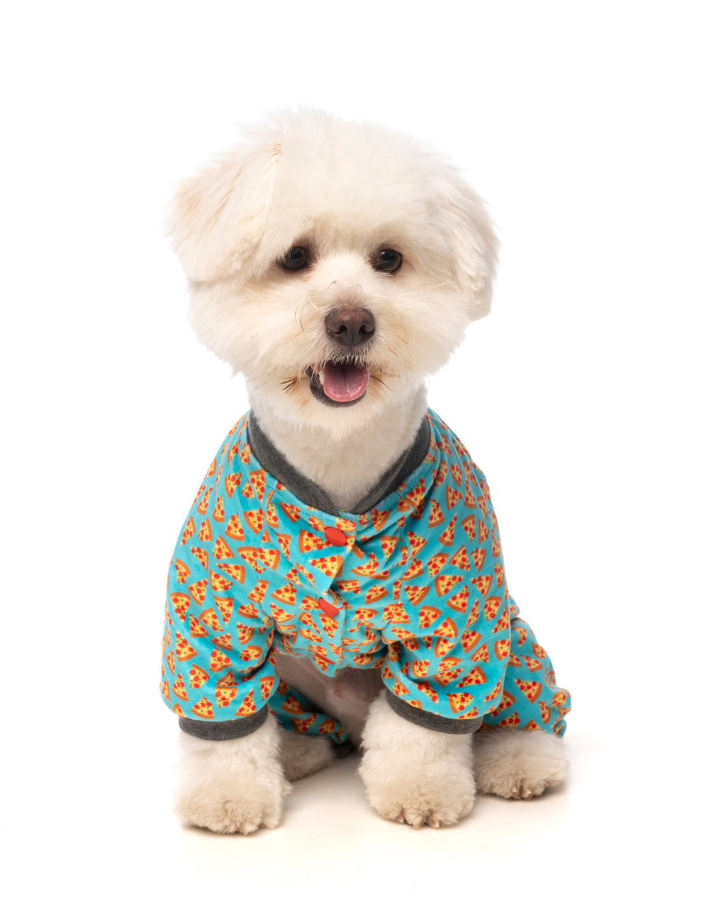 fzapiz1-7_pyjamas_pizzalyf_dog_35.jpg