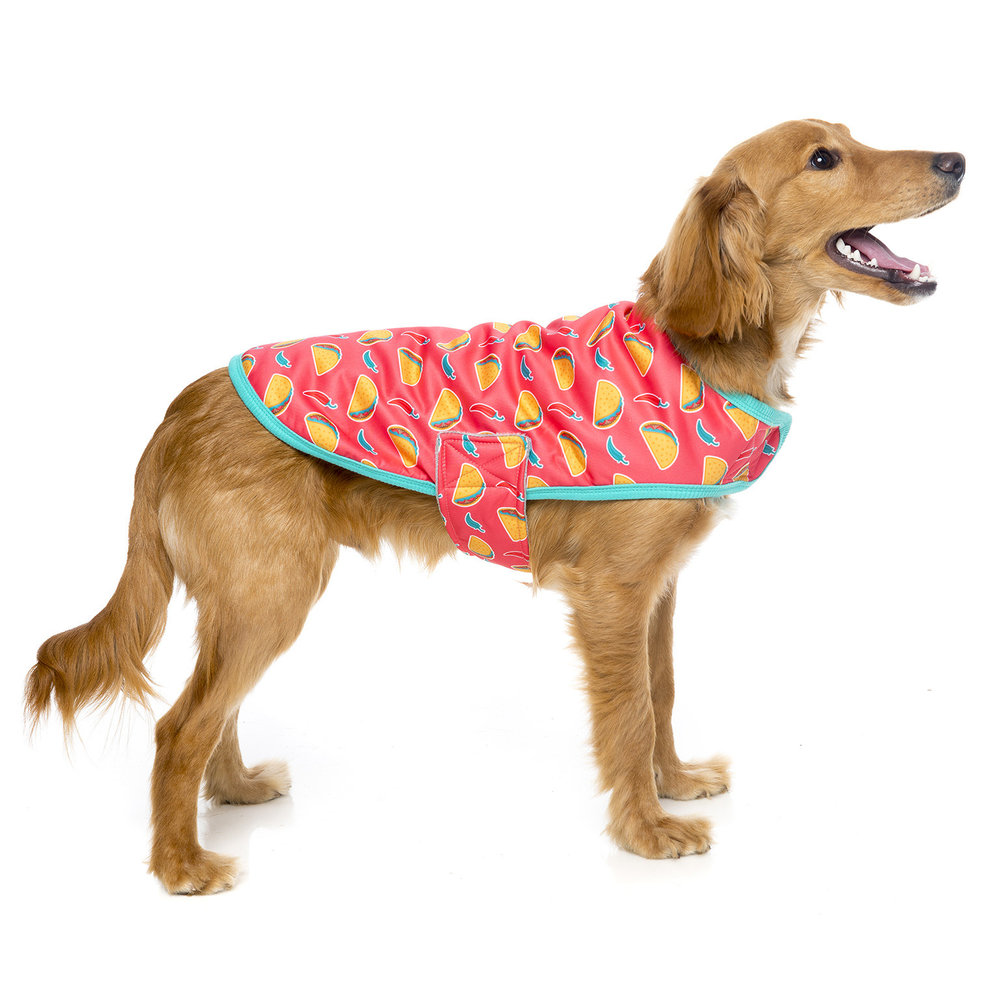 fuzzyard-wrapvest-heyesse-dog-1.jpg