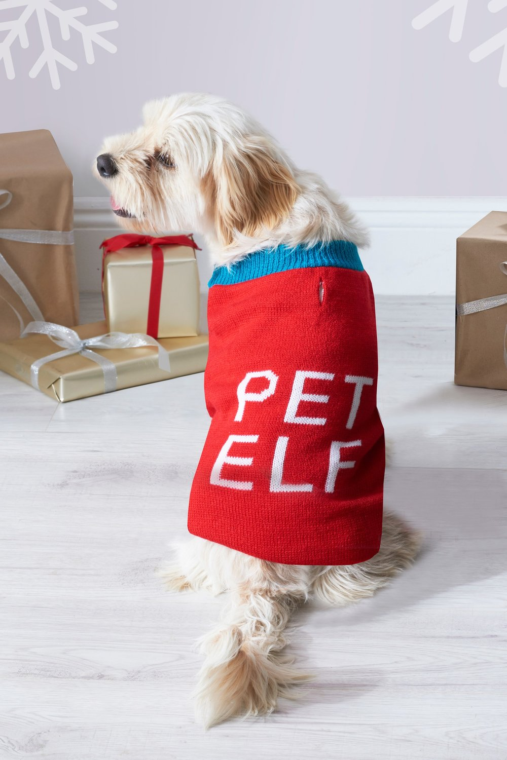 Pet Elf Jumper - Next
