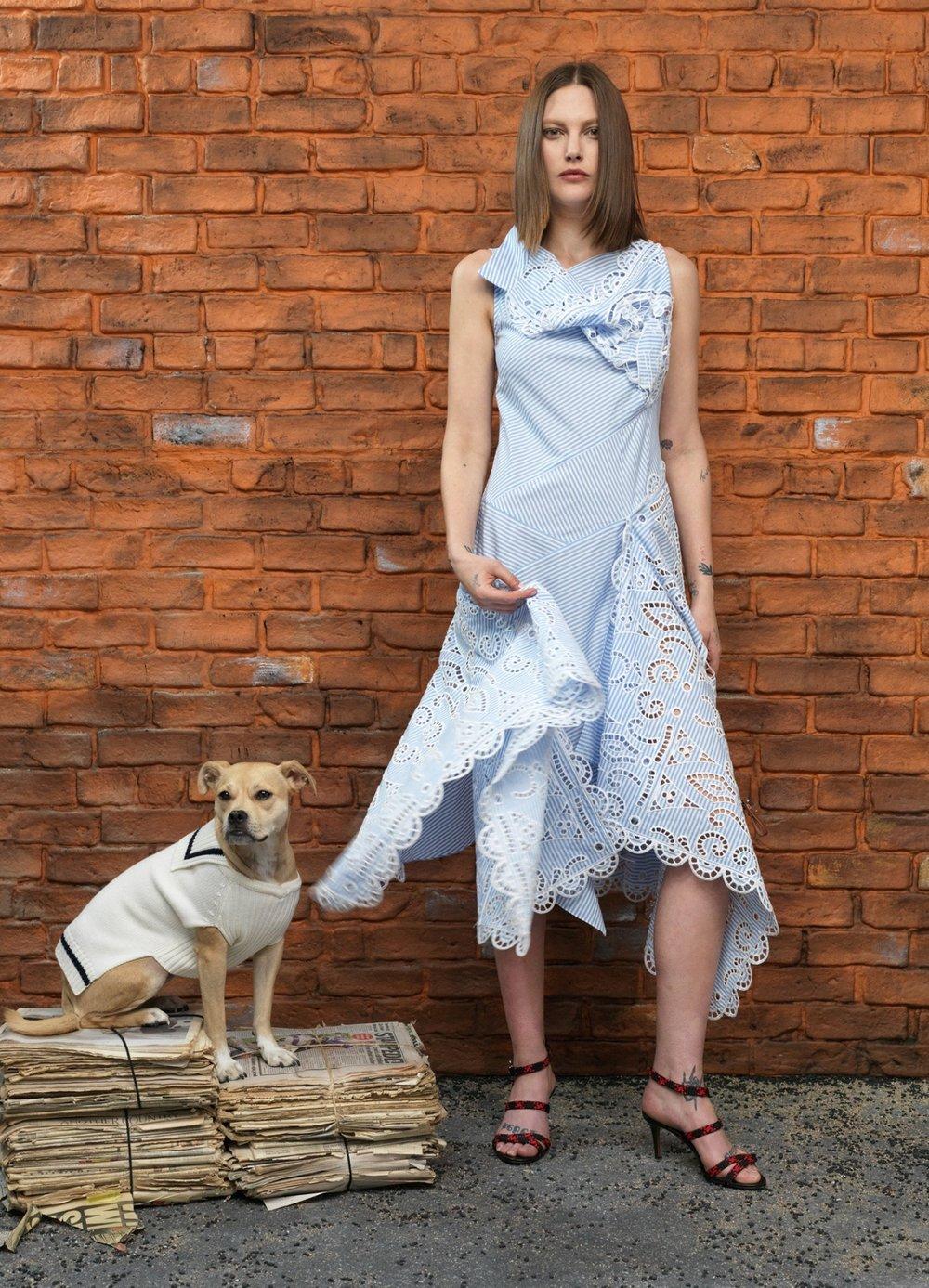 monse-dog-sailor-sweater-white-navy.jpg