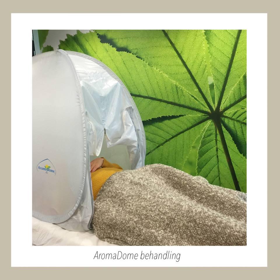 For 1000 kr. ex. diffuser. Inkl. en kort vejledning om produktet som du finder information om hér: http://www.aromadome.com