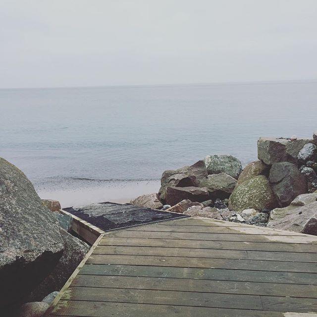 SAUNAGUS i det lækreste vejr 😍 Hvor er du @malueannika ..? #saunagus #badeklubbenmarselisborghavn