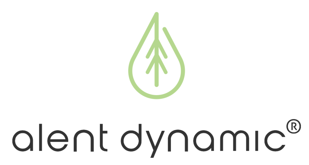 Tel. 0920-100 60                                            E-post: info@alentdynamic.se