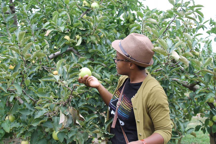 Orchard-4.jpg