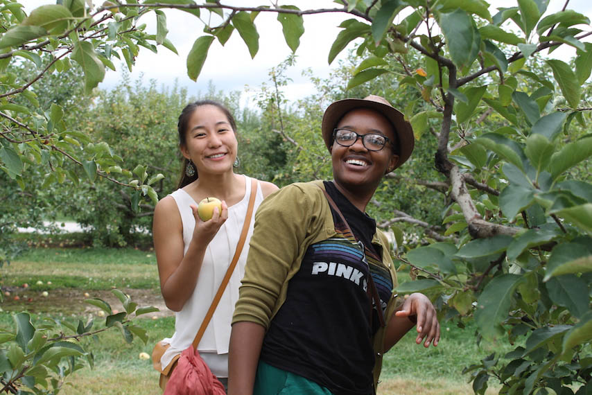 Orchard-6.jpg