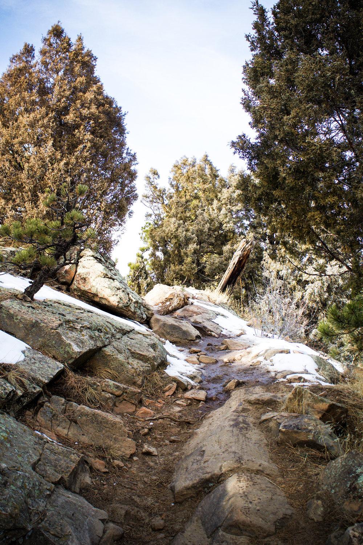 Red Rocks 15.jpg