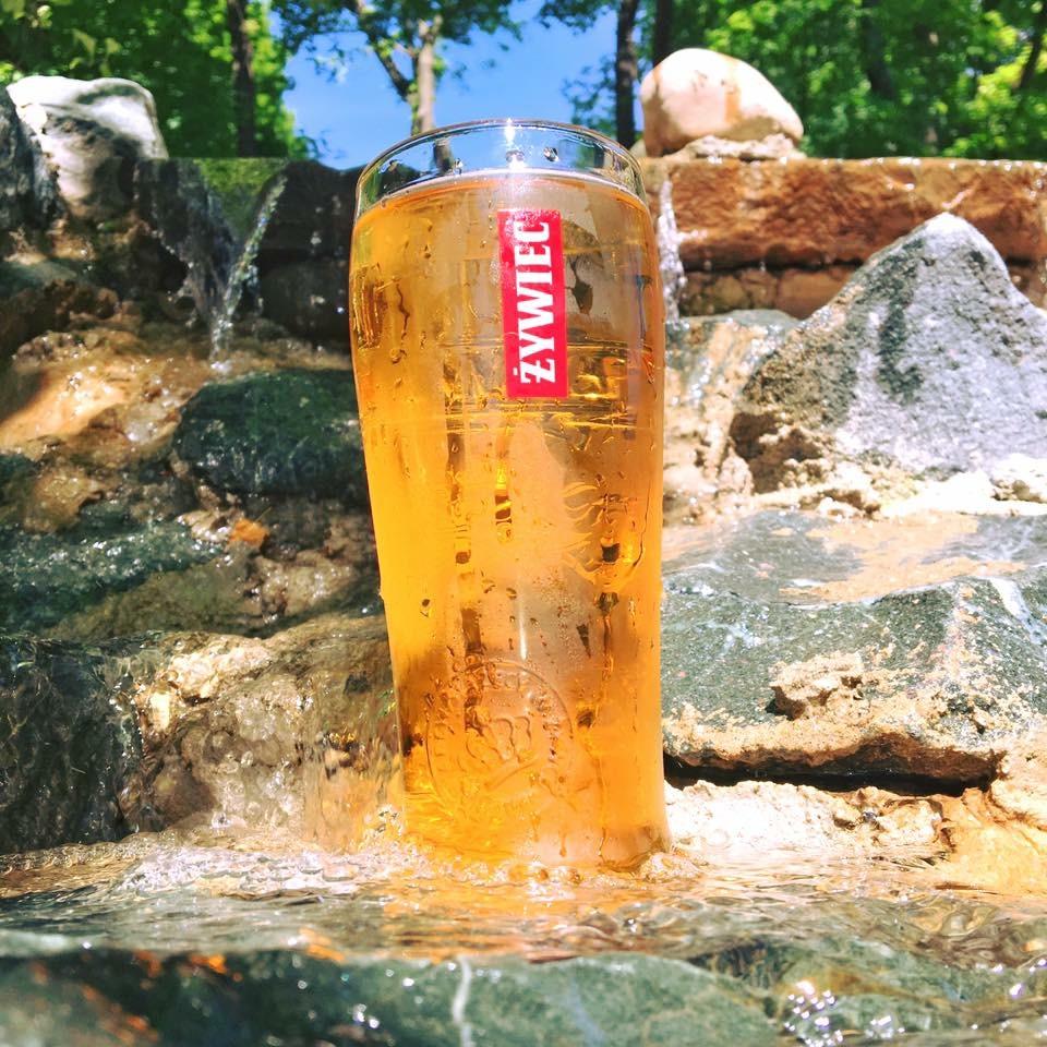 Food - Zywiec Waterfall.JPG